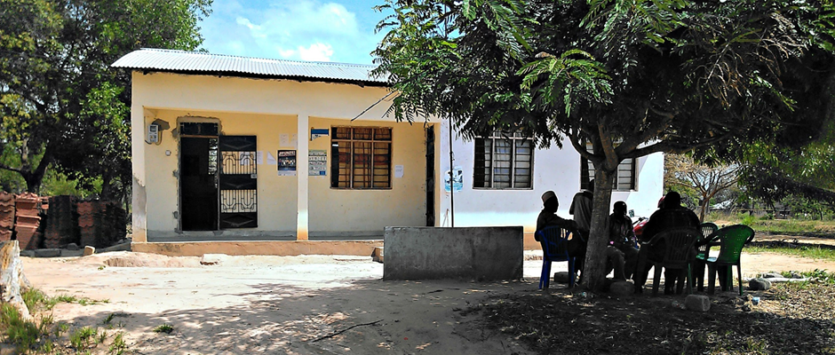 Local Health Services in Tanzania